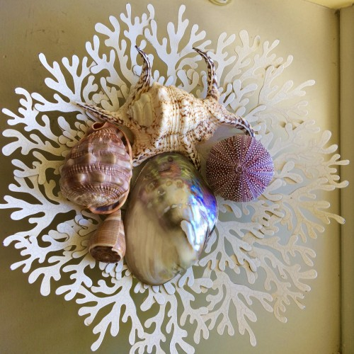 A sea weed shaped bowl of sea shells, larger than those found on the nearby East Coast beaches