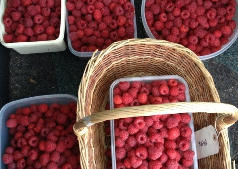Garden raspberries ready for jam