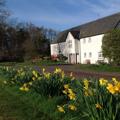 The daffodils bobbing in the Spring sunshine in front of Park House, Perthshire, ready to welcome the first guests of the season.