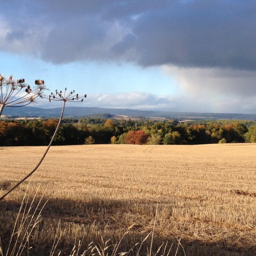 Early Autumn view across the Perthshire landscape around Park Hill House